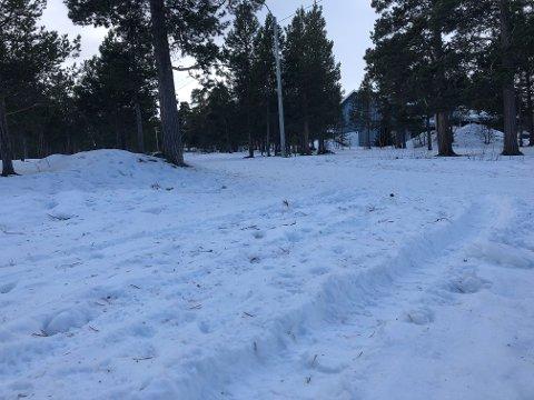 SPOR: Sporene fører inn i skiløypa. Bilen er borte lørdag ettermiddag.