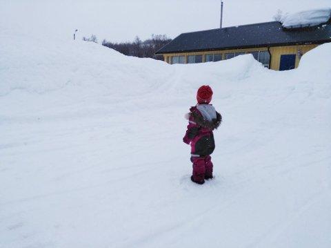 DET SNØR: Det har lavet ned mye snø i Finnmark den siste tiden. Mest har det kommet i Langfjordbotn.