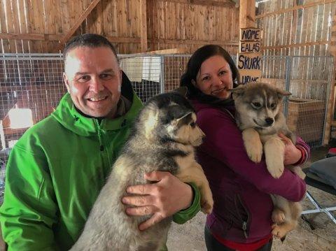 SKURK OG LURING: Blant de 14 valpene som bor i hundehuset til Gøran Andersen og Mali Katrine Garthe Strømsvåg finner vi disse to søtnosene.