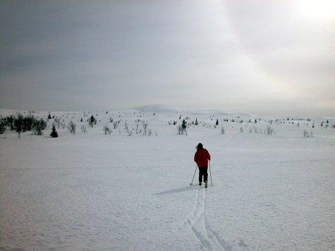 NYT SOLEN NÅ: Mandag er det fint vær de fleste steder i Finnmark. I palmehelgen, derimot, vil det både snø og regne.