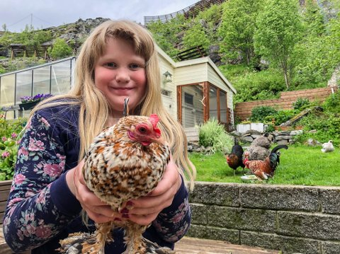 DYREPASSER: - Det er artig med høner og dyr i hagen, synes familiens ivrigste dyrepasser Vår (9).