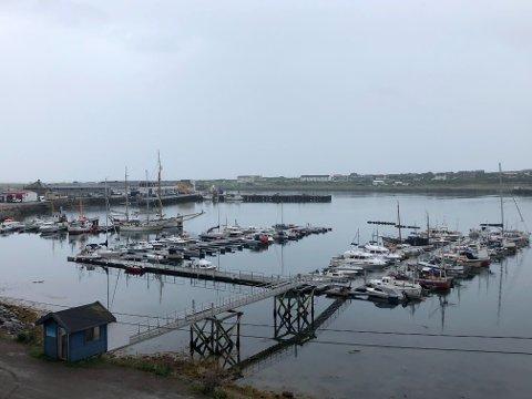 TOSIFRET: Mandagen kom med tosifret temperatur i Vadsø, men også fuktig vær.