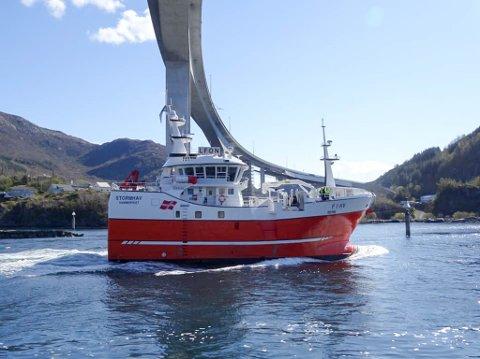 """FRAMTIDSRETTET: """"Stormhav"""" har hjemmehavn i Sørvær, men foreløpig seiler den i sør. Årsaken til det er at båten akkurat er ferdig og de gjør nå seg kjent med den nær verftet."""