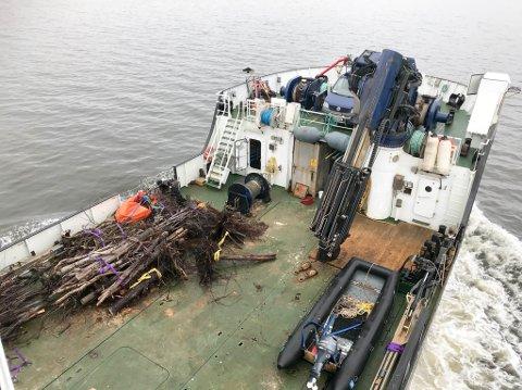 Kystverkets båt OV Bøkfjord har ryddet farleden inn til Alta.