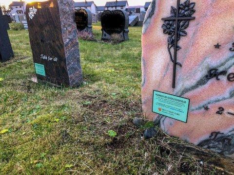 TRANGT OM PLASSEN: Om ikke lenge vil det ikke være flere gravplasser igjen på kirkegården.