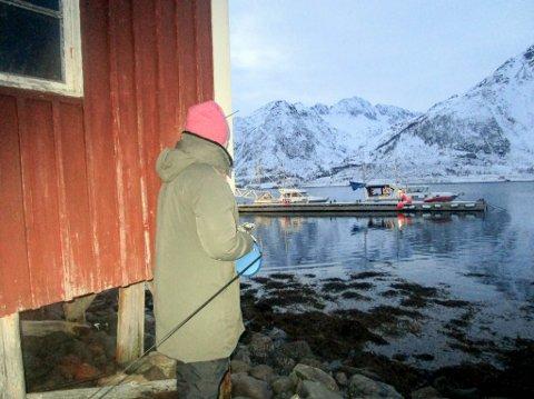 KRITISK: Strandeiendommen til Linda Nuth i Nuvsvåg har delvis blitt stengt inne av en ulovlig plassert flytebrygge. Nå har utbygger fått en tidsfrist med å finne en løsning.
