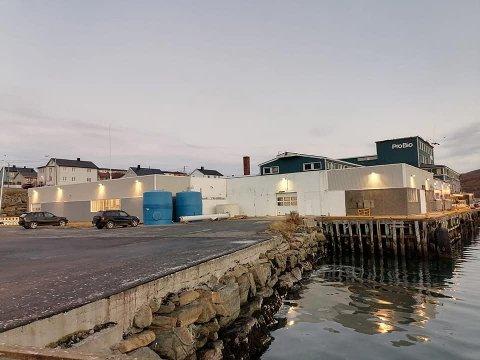 Svein Vegar Lyder og Lyder Fisk etablerer seg i Båtsfjord.