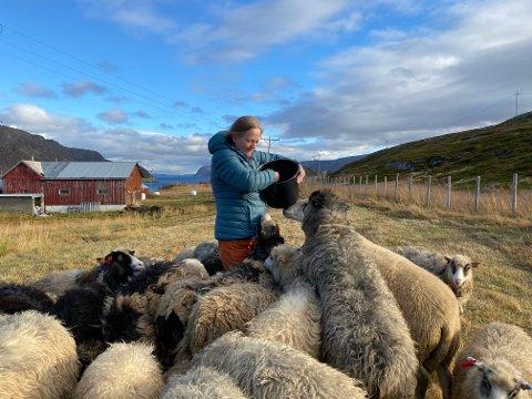 LANGT FRA ALLFARVEI: Fra Nervei, en bygd uten helårsvei, driver Elin Nilsen sin butikk der hun selger produkter av ulla til villsau og geit. Her er hun ute og gjør seg populær med kraftforbøtta.