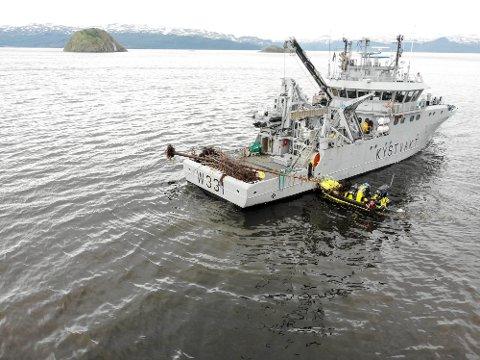 KYSTVAKTEN BIDRO: KV «Farm» bidro i oppryddingen i Altafjorden i forrige uke. De fikk ryddet bort det meste og de største trærne som kunne utgjøre en risiko for andre fartøy.