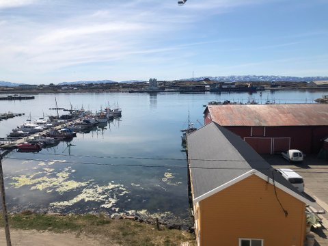SOMMER: Sommertemperaturene har truffet Finnmark. Flere steder har hatt over 20 grader onsdag.