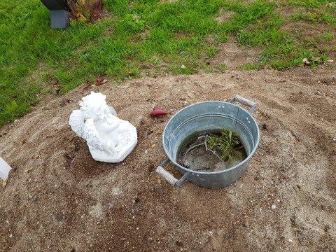 BORTE: Slik så det ut da Kjersti Mikkelsen skulle vanne blomstene på graven.