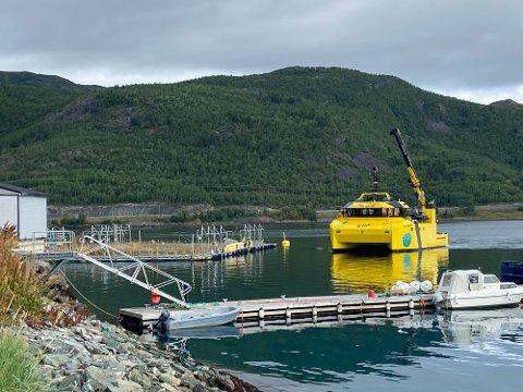 KLORUTSLIPPET: Denne arbeidsbåten bisto Grieg Seafood i arbeidet med å tømme lokalitetene i Alta for 96.000 oppdrettslaks.