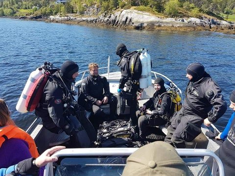STRAUMDYKK: Steinkjer sportsdykkeklubb skal dykke i Straumen lørdag. De betegner det som en helt rå opplevelse, og tolv dykkere skal delta i det spektakulære dykket. Bildet er fra en tidligere dykketur.