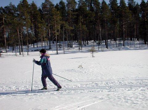 Fine forhold: Det er bare å spenne på seg skiene.