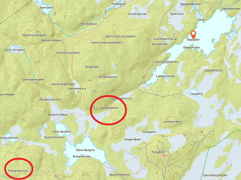 Sørvest er Fittsprettmyra, hvor brannvesenet først rykket ut. Nordøst ligger Oppsjøen, hvor brannvesenet skulle kjørt til for å komme fram til Køddebakken hvor det brant. Kartutsnitt: Norgeskart