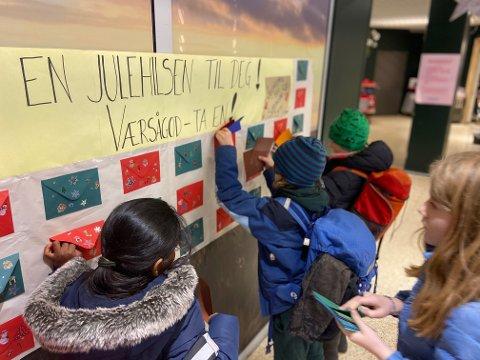 JULEHILSEN TIL FREMMEDE: Elevene har skrevet omtrent 140 julehilsner, som de håper innbyggerne tar med seg hjem.