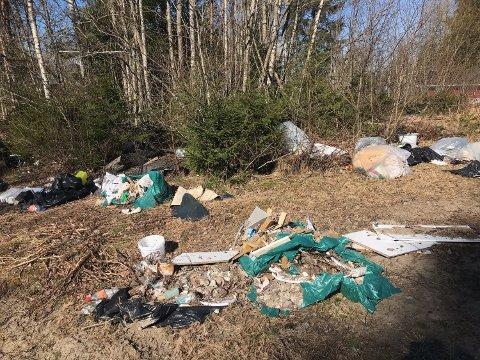 Når snøen forsvinner, dukket søppelet opp. Bildet er fra skogen ved Spilhaug avfallsdeponi.