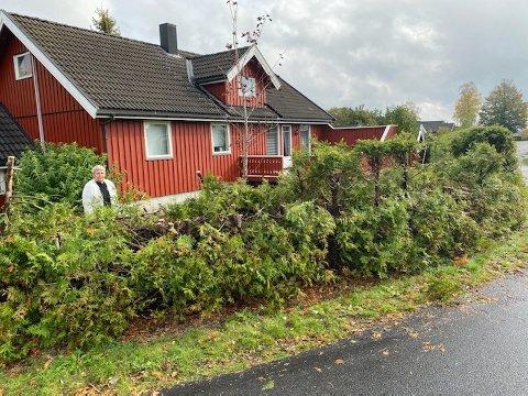 FIKK SJOKK: Mette Kristiansen ble rystet og sjokkert da hun så hvordan hekken hennes var beskåret av kommunen. Ifølge Hege Larsen i Sandefjord kommune har hun fått varsel om at hekken hennes var for høy, og at den måtte klippes.