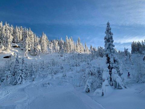 BRRR: Vinteren har virkelig fått fotfeste på Romerike.
