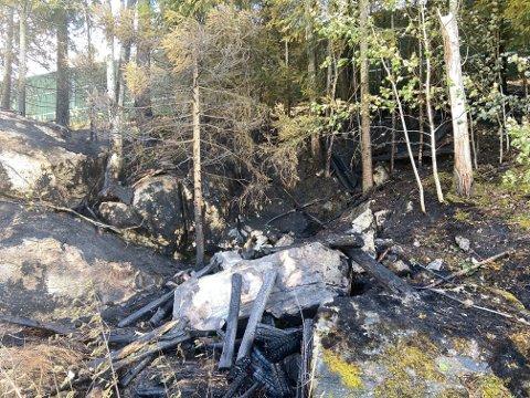Brannvesenet fikk kontroll på brannen ved fylkesvei 170 onsdag ettermiddag, slik at den ikke spredte seg. Foto: Tine Viktoria Buberg