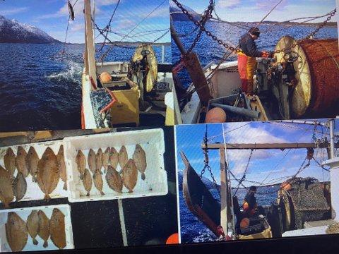 7. og 8. mai 2019 var Havforskningsinstuttet i Sandnessjøen og sammen med lokale fiskere hentet de inn materialene som de skulle jobbe med.