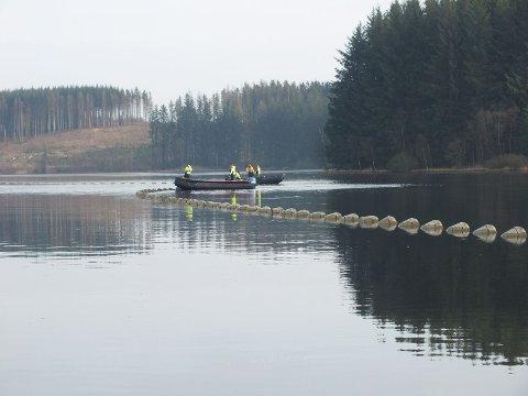 DYKK: Her ser me dykkarar frå EP Marine Group senke eit avløpsrøyr for IVAR IKS i Frøylandsvatnet. (Foto: Tron Ree.)