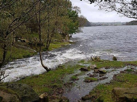 MYKJE VATN: Urånå fossar ut i Taksdalsvatnet. Både elva og vatnet har høg vasstand.