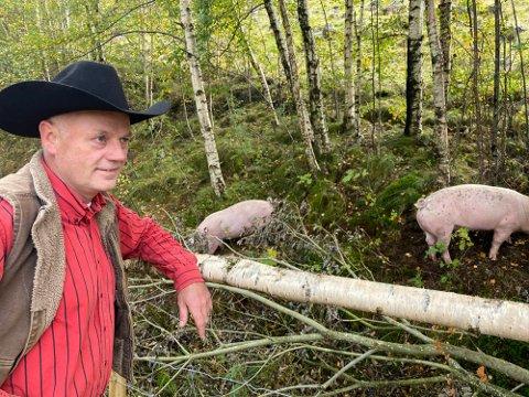 TIL BJREKREIM: Arvid Mæland har flytta til Lauperak ved Ørsdalsvatnet, men leiger ut ein driftsbygning på Jæren.