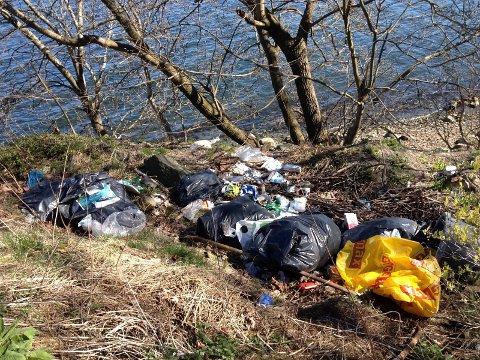 DRAPSFELLE: Alt søppelet i naturen og spesielt ved havet er potensielle drapsfeller for dyrelivet.