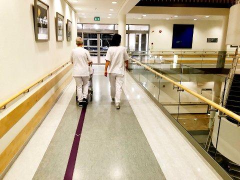 651 stillinger: Innen helse, pleie og omsorg ble det i januar  annonsert 651 ledige stillinger innen helse, pleie og omsorg. Foto: Pål Nordby
