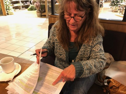 FRAM MED RØD PENN: Norsklektor Eva Hodneland sier hun ikke ville ha godkjent Nye Veiers høringsdokument om E16.