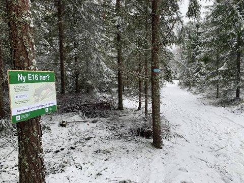 I NATUREN: Marius Holm Enerud og interesseorganisasjonen Nei til ny E16 i Ullensaker setter opp slike skilt i populære friluftsområder i kommunen.