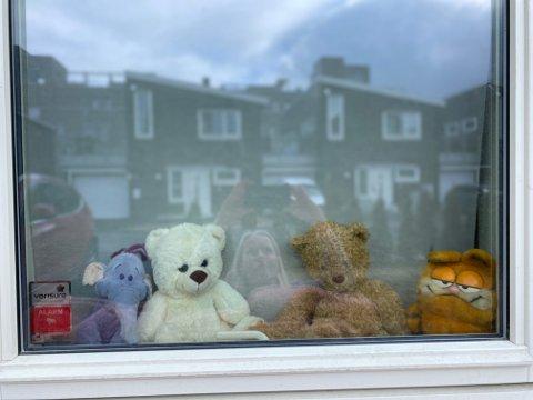 NOE Å SE PÅ: Etter at Bente Taraldsen satte bamser i vinduet, har mange i nabolaget på Jessheim fulgt etter.
