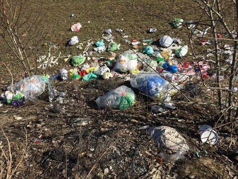 SKRAP: Store mengder privat søppel er blitt kastet ut ved en rasteplass på Trondheimsveien, like ved Jessheim Sør.