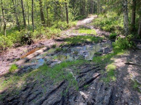 VÅTT: Flere av stiene i turområder på Jessheim ser slik ut om dagen.