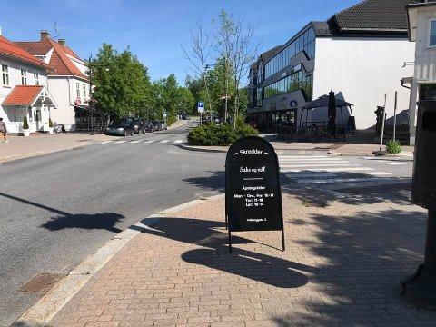 HER STO DEN: Iwonas reklameskilt var plassert i krysset Storgata/Veiberggata for at kunder som går i byens hovedgate skulle gjøres oppmerksom på bedriften. Nå er det søkk borte for andre gang.