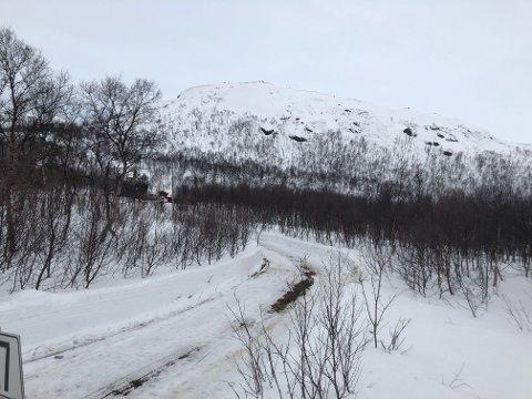 VEI: Opp denne veien rygget kvinnen i 70-årene etter at hun, datteren og barnevernet hadde kommet seg ut av den brennende hytta.