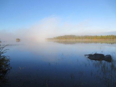 REKORD: Den aller høyeste temperaturen for hele landet i juli ble målt i Pasvik for noen dager siden. Her er en av perlene du finner Øvre Pasvik.