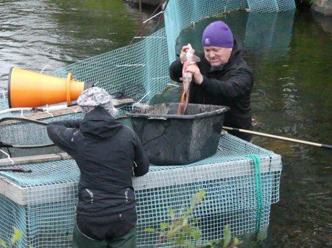 FISK: Anders Mikkola har fått fisk før. Det fikk han ikke i år.