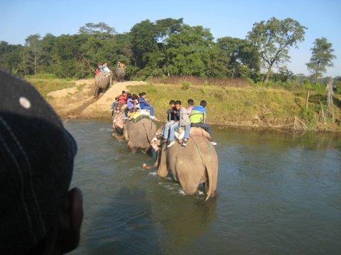 Drar du på lesartur til Nepal får du truleg sjå elefantar!