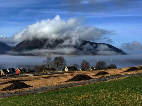 (Foto: Elisa Helland-Hansen)