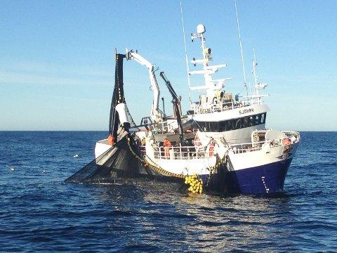 """MS """"Sjohav"""" melder om godt fiske og gode prisar."""