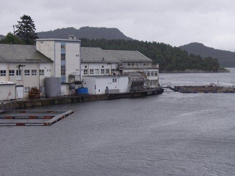 Ein person skal vera skada etter ei arbeidsulukke ved Viking Fjord på Sunde måndag ettermiddag. (Arkivfoto).
