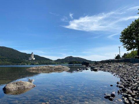 Slik kan det potensielt sett sjå ut ved Opsangervatnet fredag. (Arkivfoto)