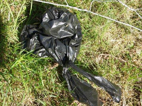 Slike posar med hundeskit er å sjå for mange plassar i naturen, meiner Signe Elise Nordfonn.