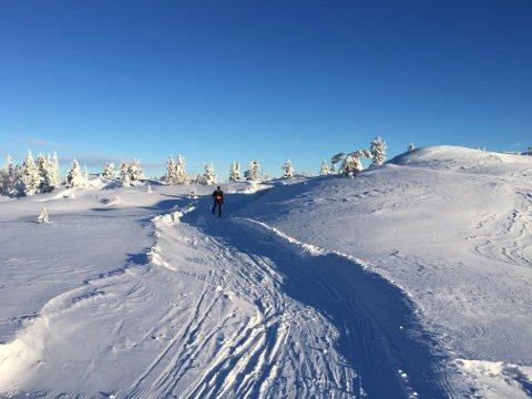 KNUTEN: Det har vært en drømmesesong i skisporene. Nå har mildværet kommet, men på Knuten har det kommet nysnø.