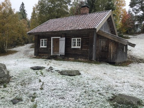 RAJE: Haugplassen på Raje nå, skriver Arnfinn Olav Tveita til Lp klokken 12.57 tirsdag.