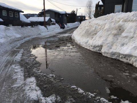 VEI BLE INNSJØ: Her i Camilla Colletts vei er det lett å bli våt på beina om du plumper uti.