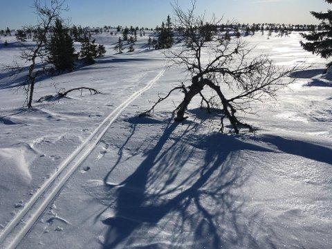 NYDELIG: Sola skinner også på Søndre Blefjell, vest for solobua.