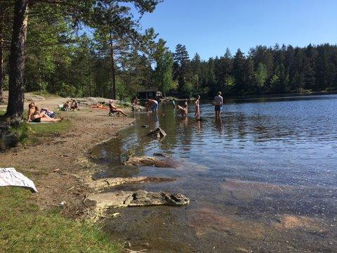 Sommeren er i full gang, og på Kjennerudvannet bader allerede de tøffeste. Badelekene kommer til uka, melder kommunen.